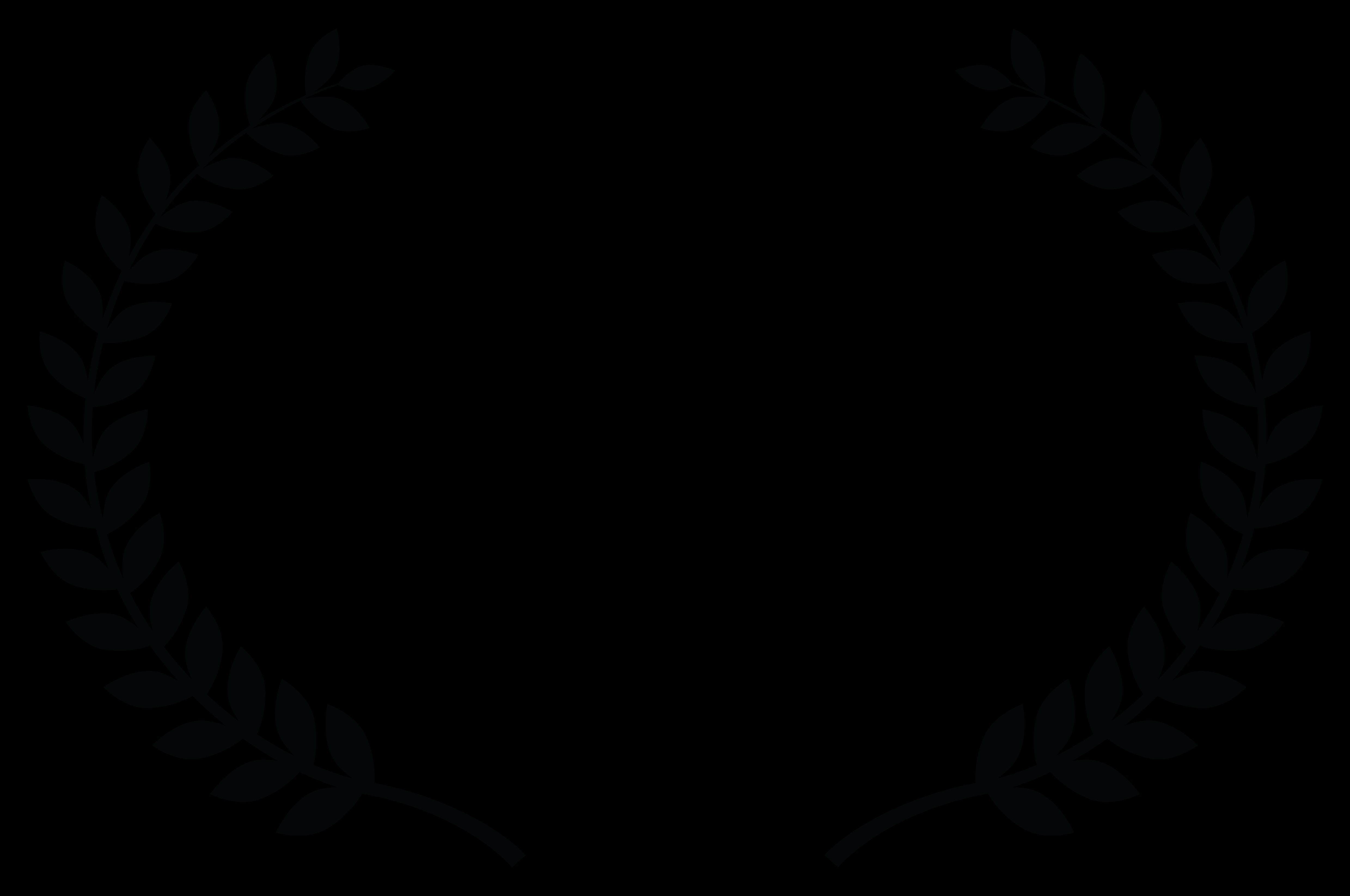 COMPETITIONFINALIST-FilmmaticFilmmakerAwards-2016